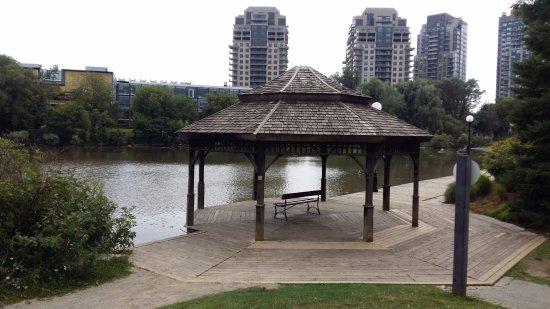 Waterloo Park: Lake view