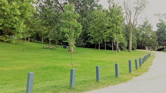 Waterloo Park: Lawns and neat walkways