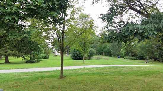 Waterloo Park: A view of the park