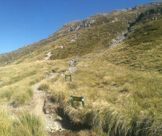 Aoraki Mount Cook National Park (Te Wahipounamu), New Zealand: 前往MULLER HUT的路