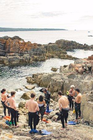 Eden, Australie : Gearing up for a snorkelling adventure