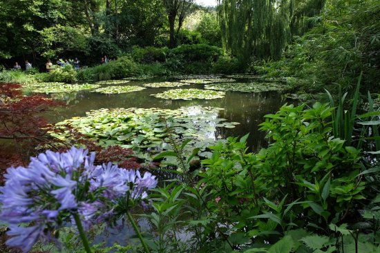 Claude Monet's House and Gardens: photo2.jpg