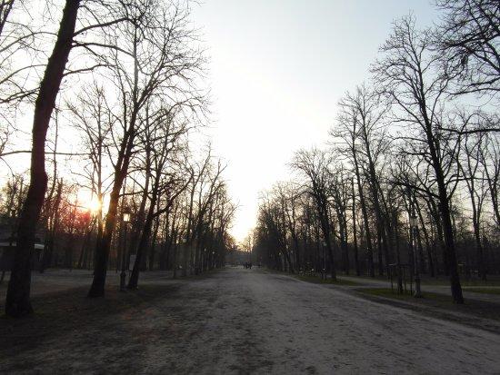 Parco Ducale: Recorrido principal que atraviesa el parque