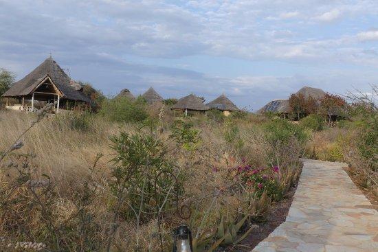 Lake Manyara National Park, Tanzania: vue globale de l'hôtel