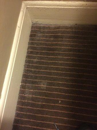 The Glencoe Inn: Thick dust on the floor