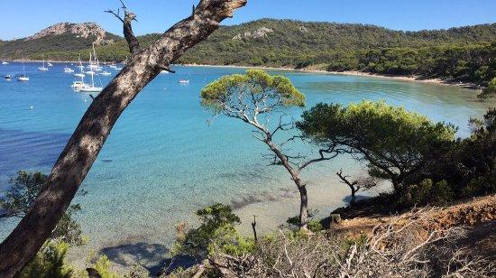 Porquerolles Island, Francia: photo3.jpg