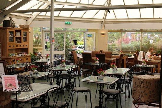 Birkacre Garden Centre Cafe