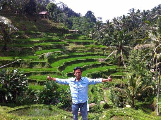 Agos Bali Travel