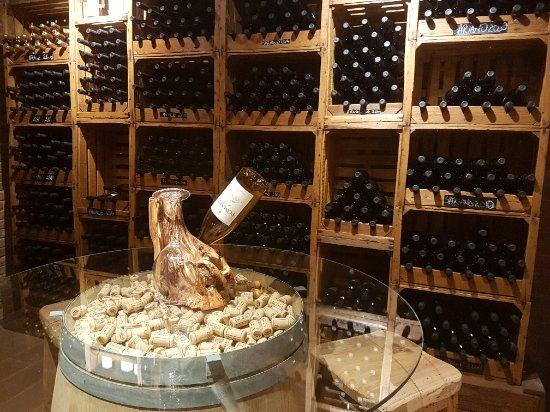 Piegaro, Italia: Excellent wines