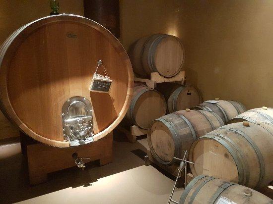 Piegaro, Italia: Interesting learning the wine process