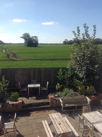 Tivetshall St. Mary, UK: View from room 6