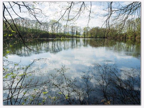 Dermbach, เยอรมนี: Mysterieus meertje, midden in het bos, ontstaan door inzakking van gesteenten.