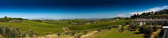 Castagnole Lanze, Italia: spring lanscape