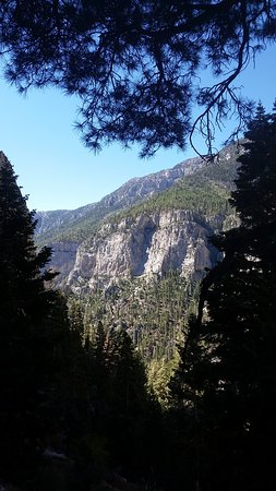 Toiyabe National Forest (Las Vegas) - UPDATED 2019 - All You