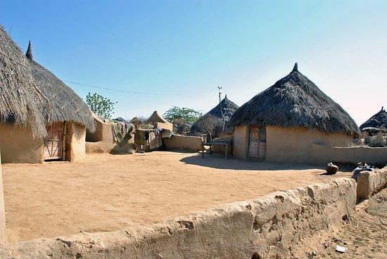 Landscape - Picture of Harish Desert Safari, Jaisalmer - Tripadvisor