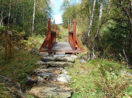 Vang, Norwegen: Nye bruer, kopier av de gamle.