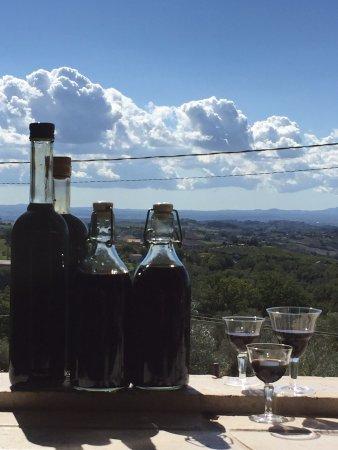 Calvi dell'Umbria, Italien: Licorice liquor, so tasty, the original recipe come from Calabria, another beautiful region of I