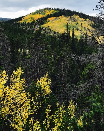 Red Feather Lakes, Colorado: photo3.jpg