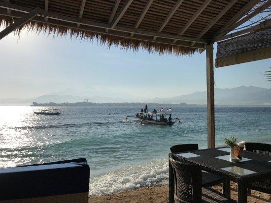 Manta dive gili air resort gili air indonesi foto 39 s - Manta dive gili air ...
