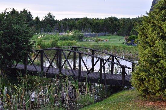 Bilde fra Saaremaa