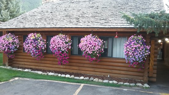 Cowboy Village Resort: Beautiful hanging baskets are everywhere.