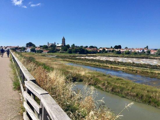 Marais du Mullembourg
