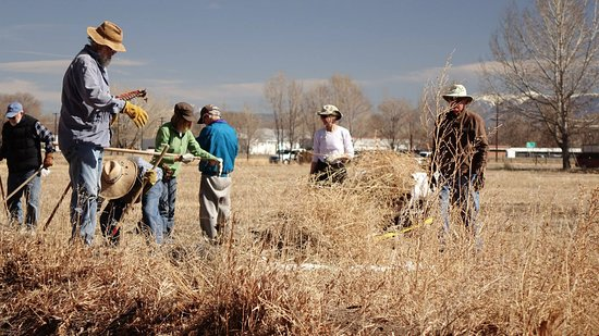 Alamosa, Κολοράντο: Volunteers cleaning up the land in Fall