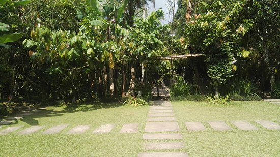 Penebel, Indonesien: IMG_20170922_140510_large.jpg