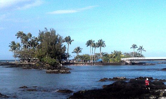 Heber City, UT: coconut island