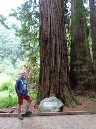 Mill Valley, CA: Muir Woods