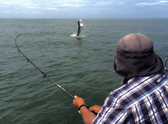 Barra del Colorado Wildlife Refuge, Costa Rica: Tarpon on the line - catch & release