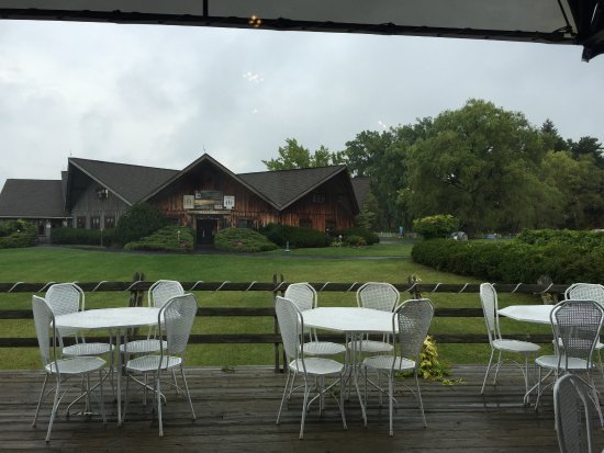 Lodi, NY: View of the winery from inside their Ginny Lee Cafe