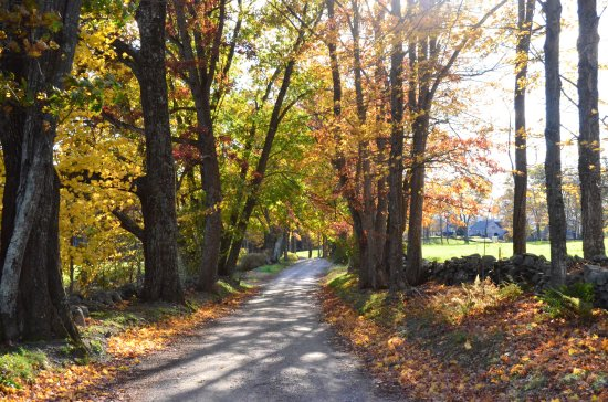 Inn at Valley Farms: Local historic road during foliage season.