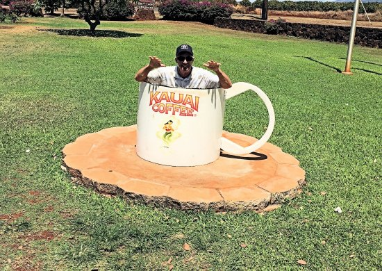 Kauai Coffee Company: Cup for photo