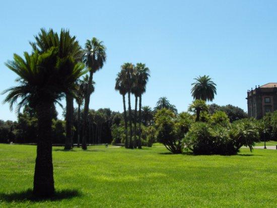 Museo Nazionale di Capodimonte: parc de capodimonte