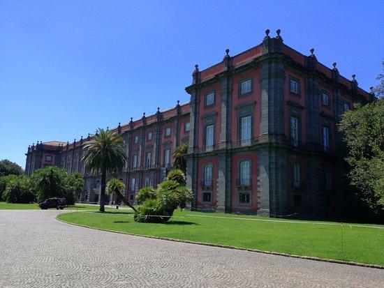 Museo Nazionale di Capodimonte: parc de capodimonte - musée extérieur