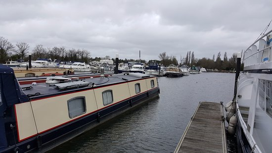 ‪‪Shepperton‬, UK: Shepperton Marina‬