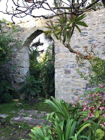 Ventnor Botanic Garden: photo3.jpg