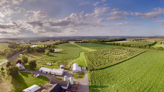 Phillipsburg, Нью-Джерси: Arial of the farm and Corn Maze, Harmony, NJ