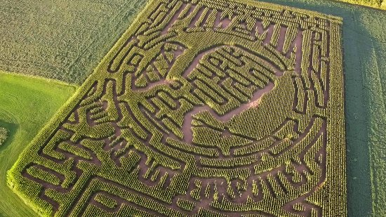 Phillipsburg, NJ: Arial of the Corn Maze, Harmony, NJ. The theme each year will be a military theme.