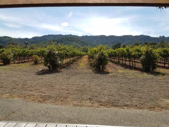 Оуквил, Калифорния: Vineyards at Paradigm 9/18/17