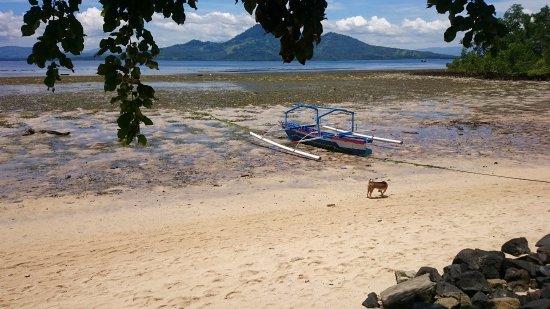 Bunaken Beach Resort: Low tide