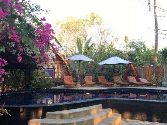 Manta dive gili air resort gili air indonesi foto 39 s reviews en prijsvergelijking - Manta dive gili air resort ...