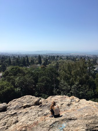 View of the San Francisco Bay from Indian Rock Park