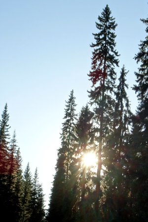 Sun Peaks Resmi