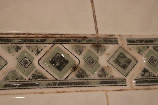 Grange-over-Sands, UK: Mildew on the en-suite bathroom tiles