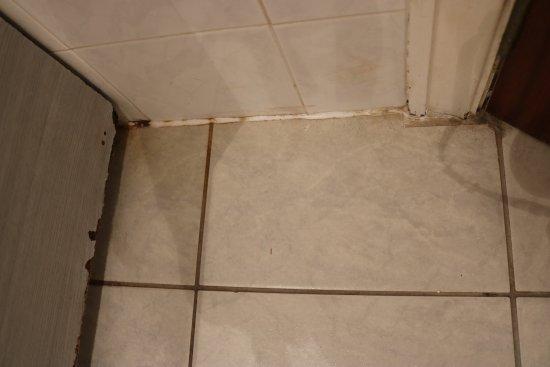 Grange-over-Sands, UK: Dirty-looking floor tiles in the en-suite bathroom