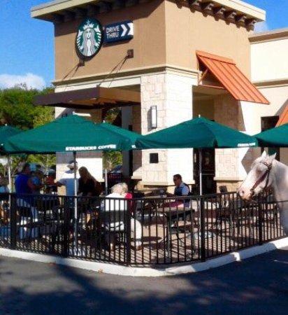Starbucks: Front shot