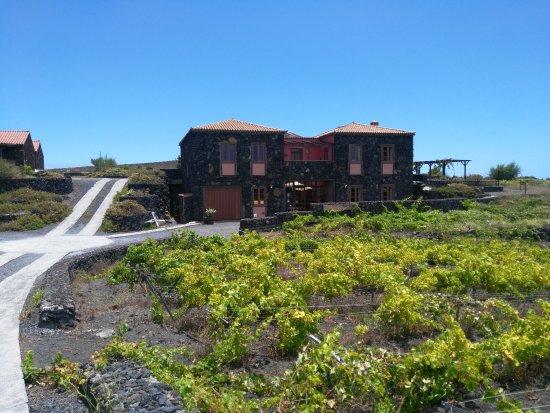 La cuenta photo de la casa del volcan fuencaliente de la palma tripadvisor - La casa del volcan ...