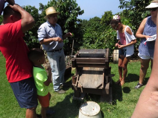 Captain Cook, Hawái: A lesson on coffee